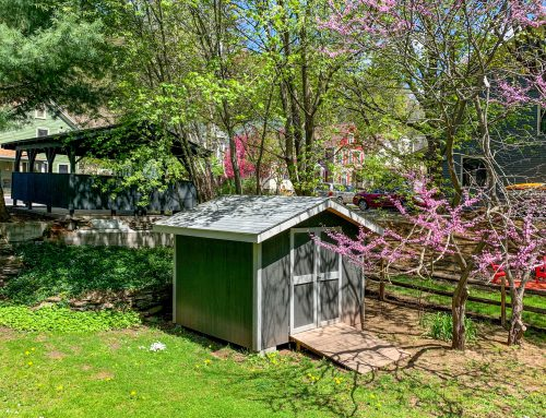 Large Private Yard –  5 Orchard Street